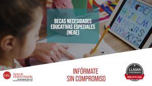 becas-de-necesidades-educativas-especiales