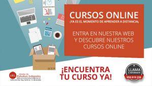 cursos-online-centro-estudios-integrales